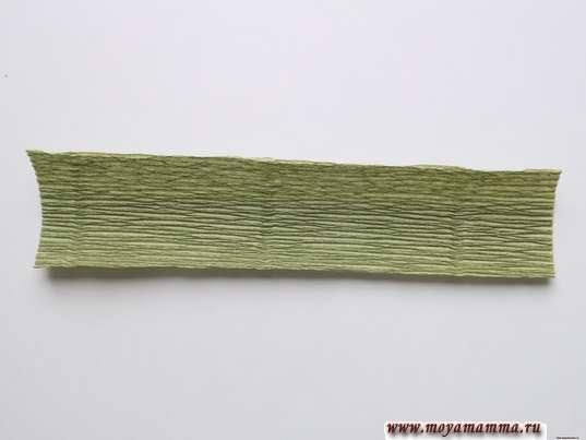 Прямоугольник зеленой гофрированной бумаги 13х3 см