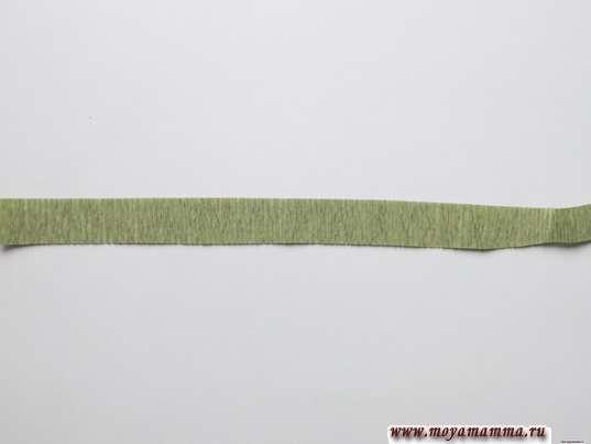 длинная полоска зеленой гофрированной бумаги