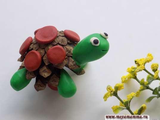 Черепаха из шишки и пластилина