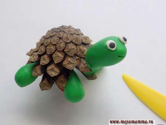 рот черепахи