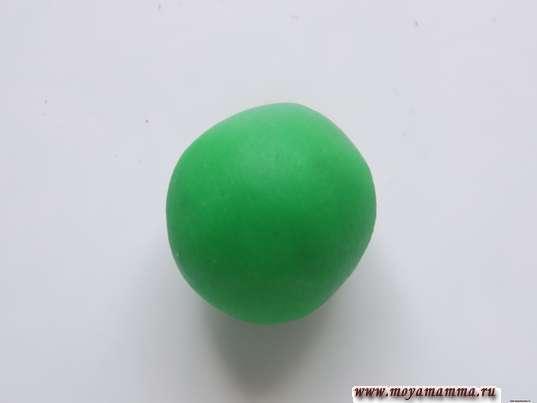 Черепаха из шишки. Шарик из зеленого пластилина