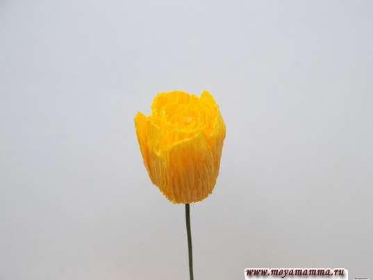 Хризантема из гофрированной бумаги. Серединка хризантемы