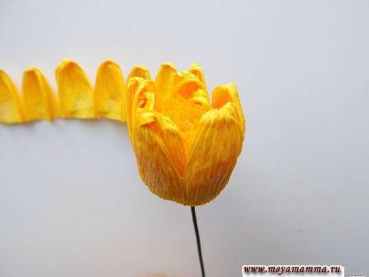 Формирование цветка вокруг серединки