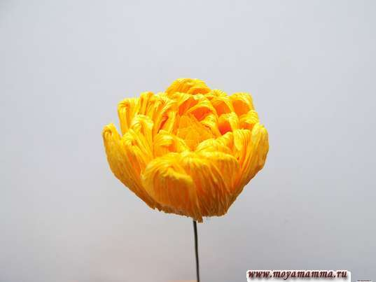 Изготовление хризантемы