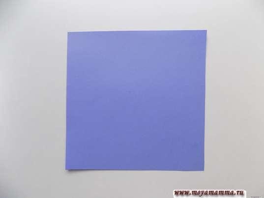 Квадрат со стороной 16 см