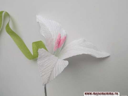 Лилия из гофрированной бумаги. 3 лепестка лилии