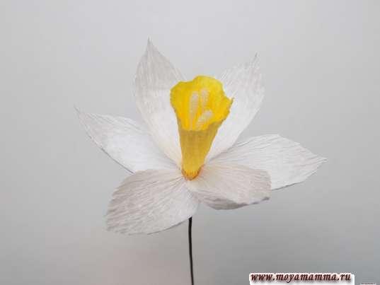 Нарцисс из гофрированной бумаги. Приклеивание лепестков