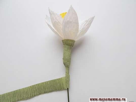 Нарцисс из гофрированной бумаги. Оформление стебля