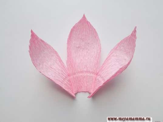 Орхидея из гофрированной бумаги. Разведение 3-х лепестков