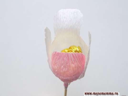 Орхидея из гофрированной бумаги. Приклеивание белого лепестка