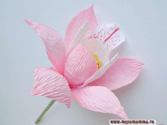 Орхидея из гофрированной бумаги