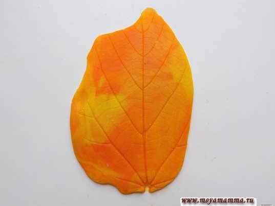 Осенние листья из пластилина. Оттиск листа на пластилине
