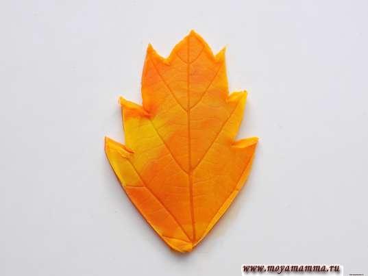 Осенние листья из пластилина. Осенний листочек из пластилина