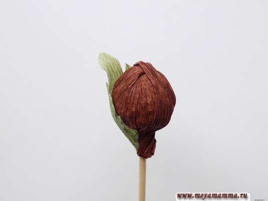 Приклеивание листочка к ореху