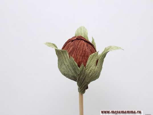 Осенний букет из гофрированной бумаги. Орех с листочками