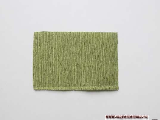 заготовка из зеленой бумаги размером 5х7 см