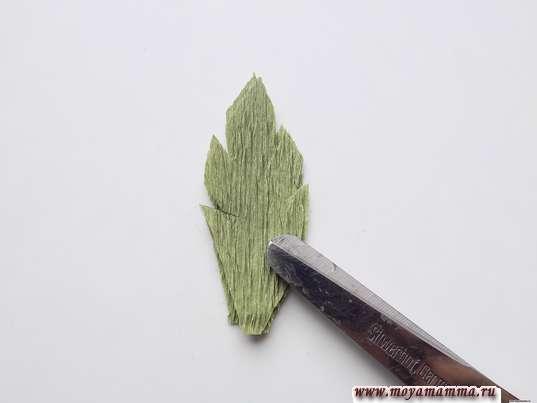 листочек с зубчиками