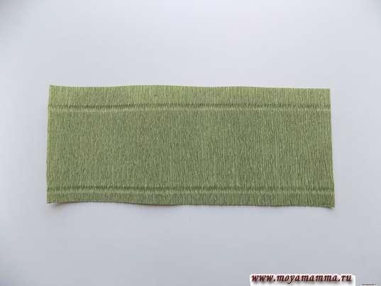 прямоугольная заготовка, вырезанная из зеленой флористической бумаги