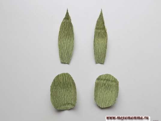 Листочки для чашелистика