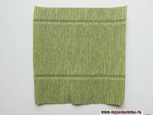 квадрат со стороной 8 см из зеленой гофрированной бумаги