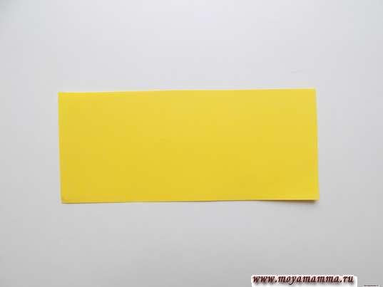 прямоугольник размером 6х14 см