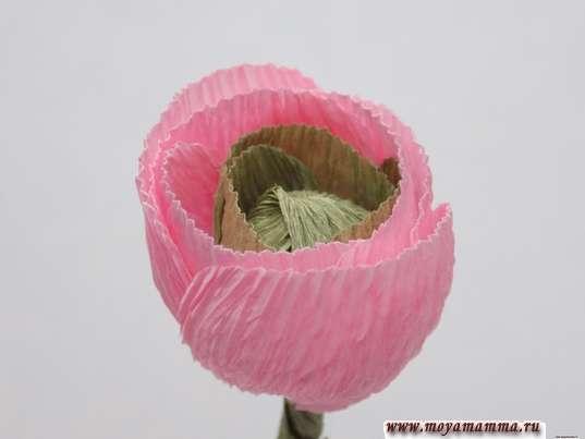 Ранункулюс из гофрированной бумаги. Приклеивание светло-розовых лепестков