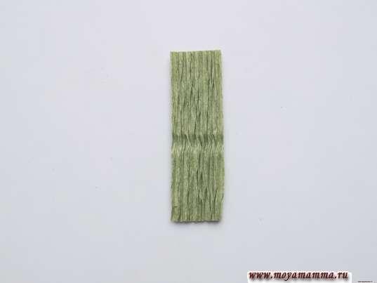 из зеленой гофрированной бумаги узкий прямоугольник 1х3,5 см