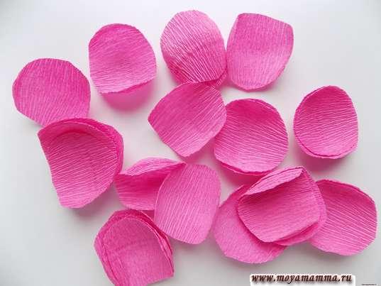 30 ярко-розовых лепестков