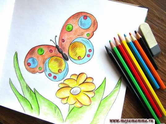 """Рисунок карандашами """"Бабочка на лугу"""""""