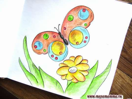 Рисунок Бабочка на лугу