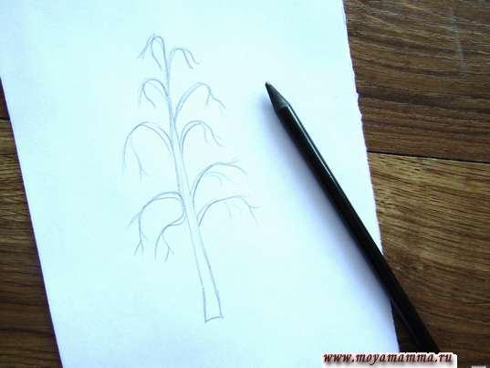 Набросок ветвей