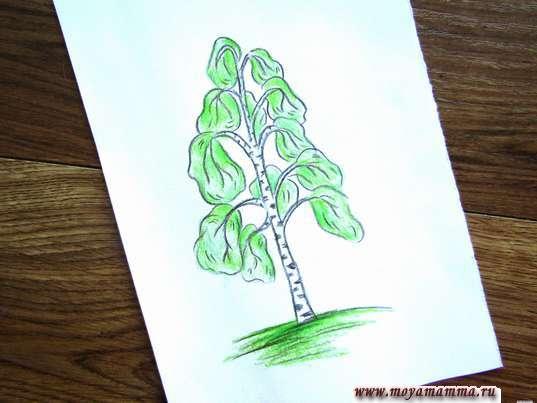 рисунок березы для детей