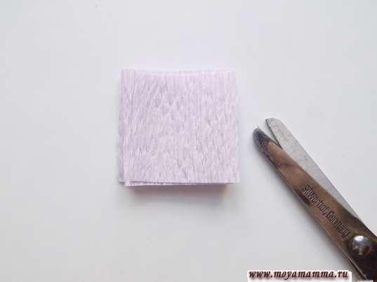 Заготовка для вырезания лепестков