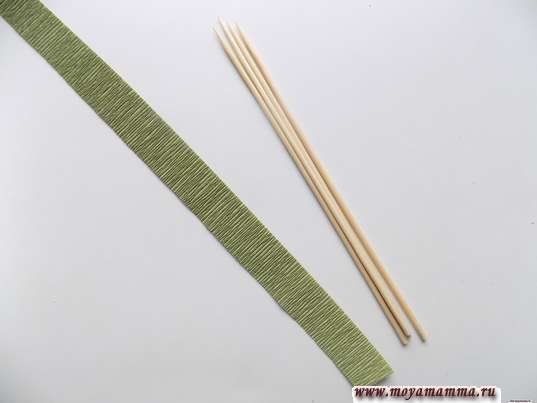4 деревянные шпажки и полоска зеленой гофрированной бумаги