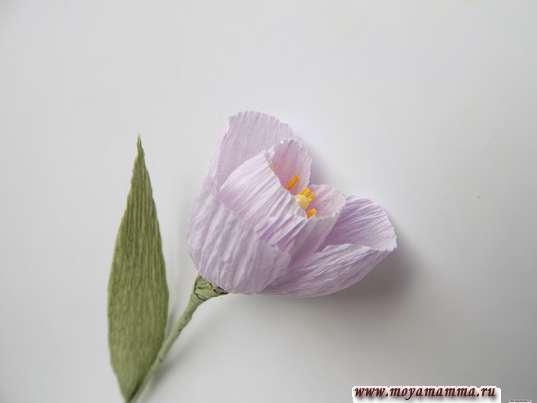 Цветы в коробке из бумаги. Готовый цветочек