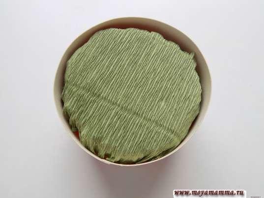 Цветы в коробке из бумаги. Кружок зеленой гофрированной бумаги