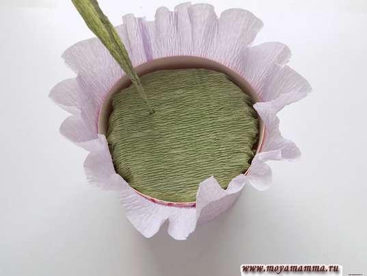 Цветы в коробке из бумаги. Закрепление цветочка в пенопласте