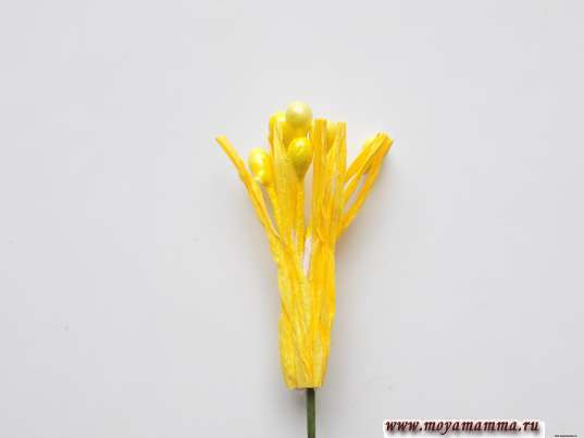 серединка для будущего цветочка