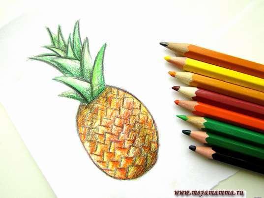 Ананас карандашами