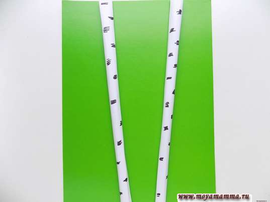 Аппликация Скворечник. Два ствола берез на зеленом листе бумаги