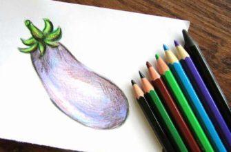 Баклажан цветными карандашами