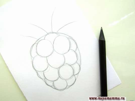 Детализация ягоды