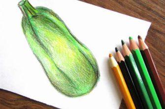 кабачок карандашами
