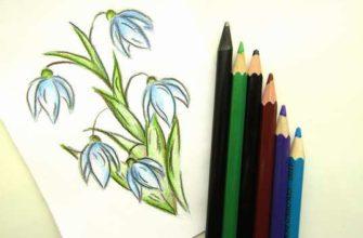 как нарисовать весенние цветы