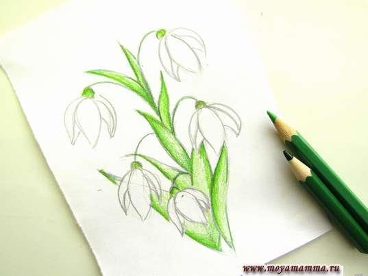 Использование зеленых карандашей