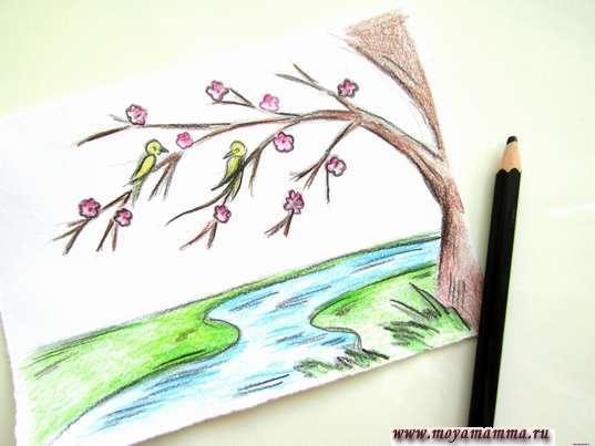 Как нарисовать весну карандашами. Раскрашивание птичек и выполнение контура
