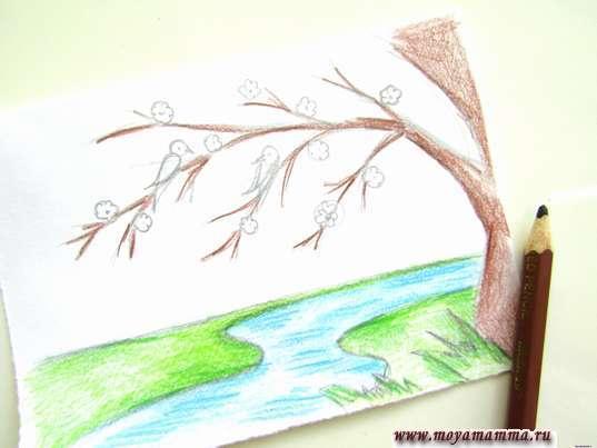 Как нарисовать весну карандашами. Ствол дерева и его ветви коричневым карандашом