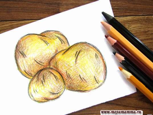 картофель карандашами