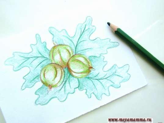 Раскрашивание темно-зеленым цветом листиков