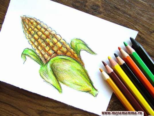 кукуруза карандашами